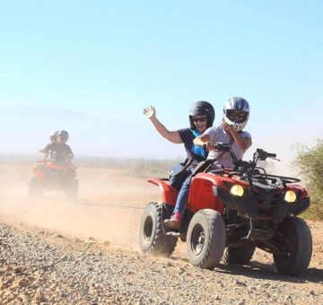 Marrakech quad biking and camel ride