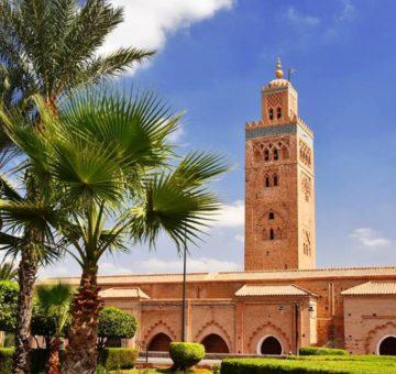 Visite guidée de marrakech