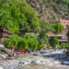 Private Driver From Marrakesh To Ourika valley